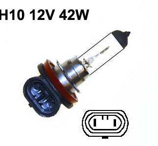 12V halogen H10
