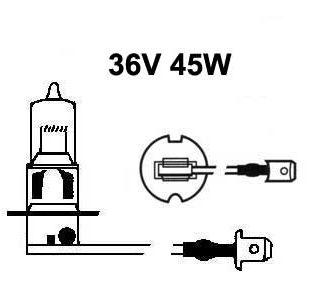 36V halogen H3